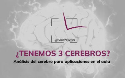 ¿Tenemos 3 cerebros?