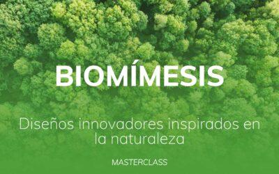 Biomímesis_ diseños innovadores inspirados en la naturaleza